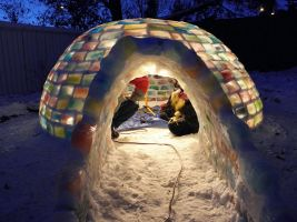 color igloo